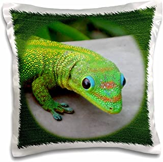 3dRose pc_21654_1 Gecko Cameo-Pillow Case, 16 by 16""