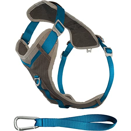Kurgo Journey Multi-Use Dog Harness, Reflective Harness, Dog Running Harness, Dog Walking Harness, Dog Hiking Harness, Seat Belt Tether Included