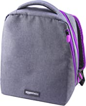 AmazonBasics Backpack for Super NES , Grey