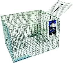 galvanized pinfish trap
