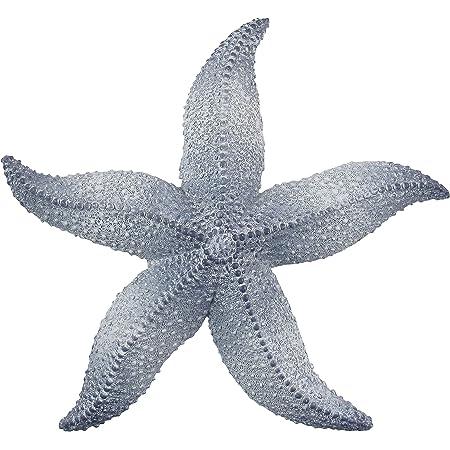 Amazon Com Handpainted Starfish Star Fish Replica Wall Mount Kid Room Decor Plaque 6 Red Yellow Green Everything Else