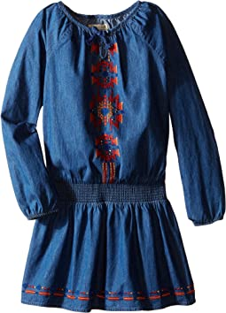 Chambray Peasant Dress with Embroidery (Little Kids)