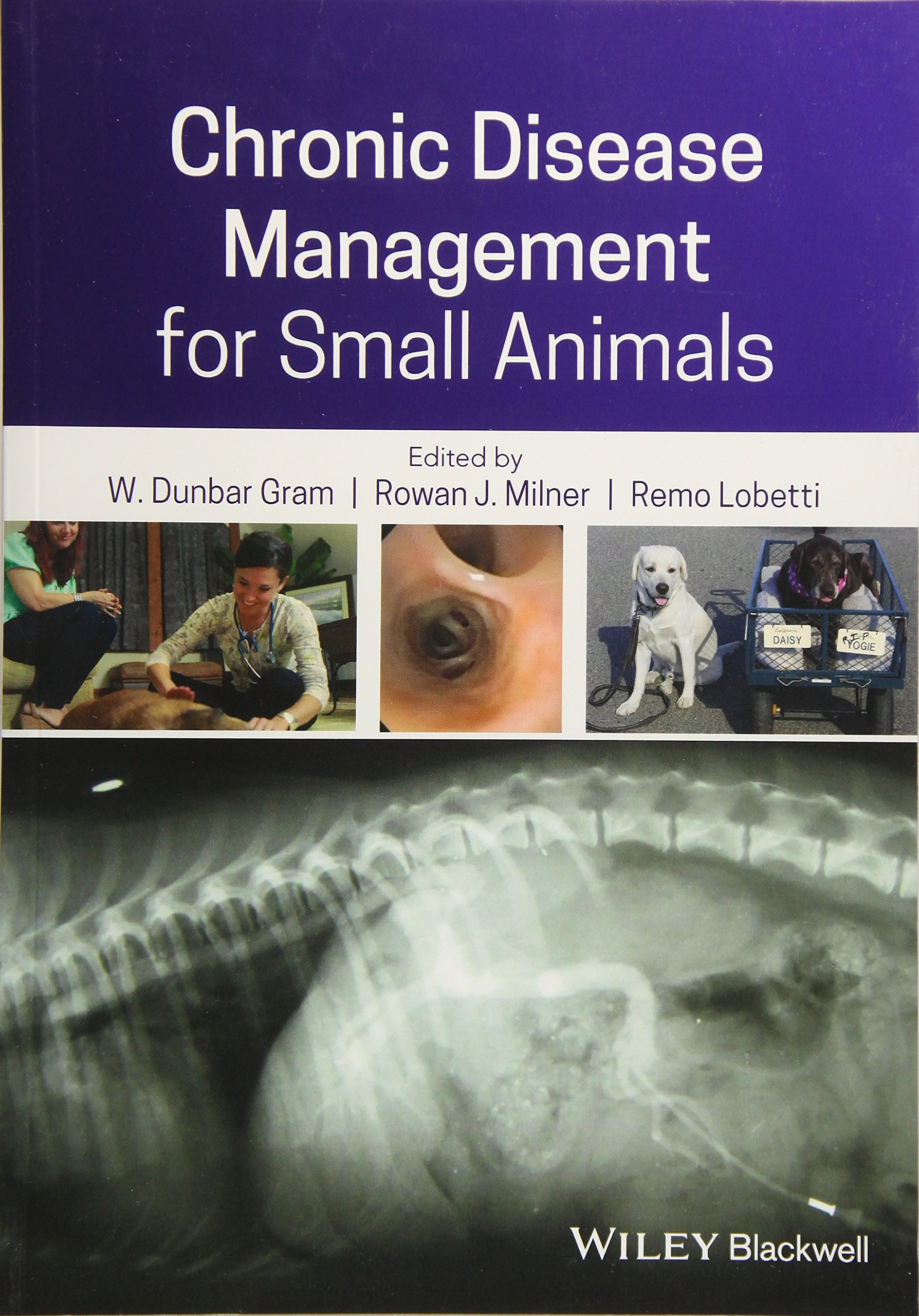 Download Chronic Disease Management For Small Animals 
