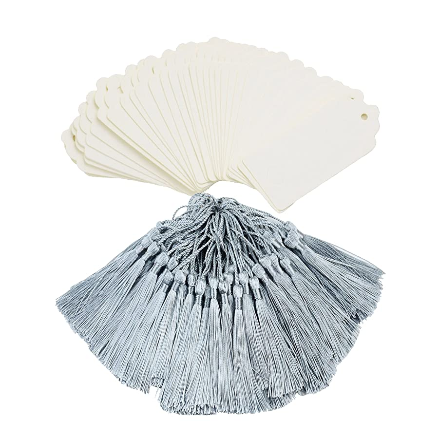 Makhry 100 Pcs Imported Rectangle Kraft Paper Bookmarks Gift Tags Wedding Favor Bonbonniere Favor Thank You Gift Tags with 100 pcs Tassels (White&Light Grey)