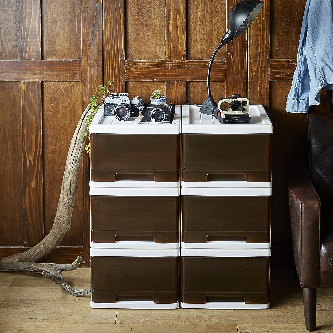 鳥擬人化光沢のある収納ケース 収納ボックス 衣類収納 収納 完成品 幅34.5×奥行47×高24cm ブラウン 6個セット 【大型】
