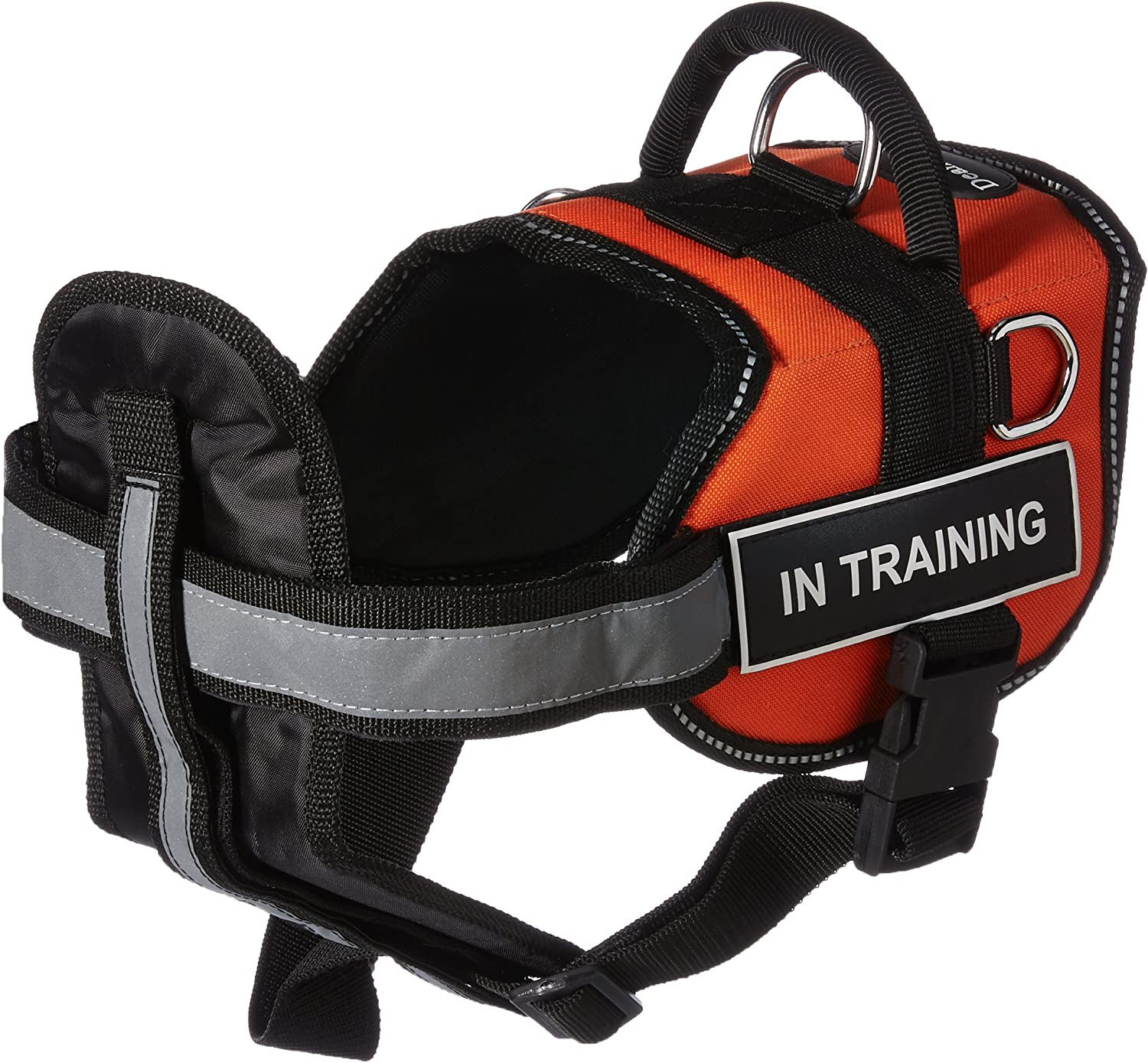 Dean & Tyler Bundle DT Works Medium orange Black In Training  Pet Harness with Chest Support and 6Feet Stainless Snap Padded Puppy Leash