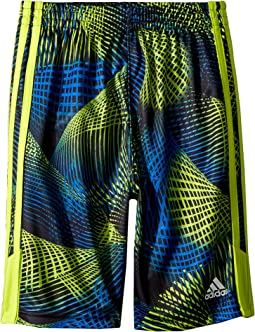 adidas Kids - Amplified Net Shorts (Toddler/Little Kids)