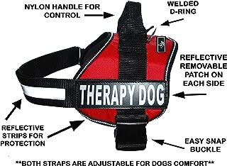 measuring dog for vest