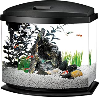 aqueon mini bow 5 gallon aquarium starter kit