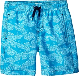 Hatley Kids - Shark Alley Swim Trunks (Toddler/Little Kids/Big Kids)
