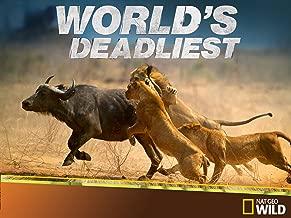 World's Deadliest Season 2