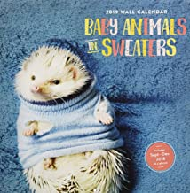 Baby Animals in Sweaters 2019 Wall Calendar