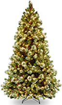 National Tree 7.5 Foot Wintry Pine Medium Tree with 650 Clear Lights, Hinged (WP1-308-75)