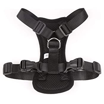 Futurekart Adustable Dog Harness (Length 9 inch, Neck Size 11-15 inch, Chest size 16-23 inch