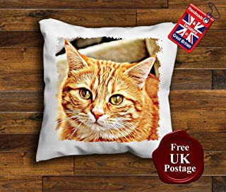 Housewarming Christmas Printed Cushion Cover//Throw Pillow Cover//Gift For Mum Birthday FunnyLaziness Definition Cushion Cover Friend Cheeky Joke Mothers Day Fathers Day Dad Novelty