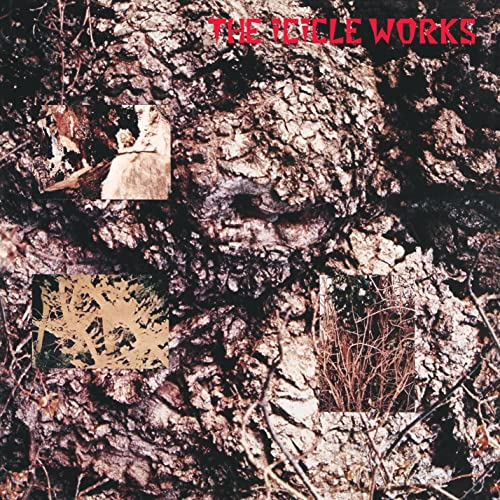 Resultado de imagen de The Icicle Works - Lp: The Icicle Works 500x500