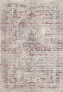 Loloi II Dante Collection Distressed/Vintage Persian Area Rug, 7'-10