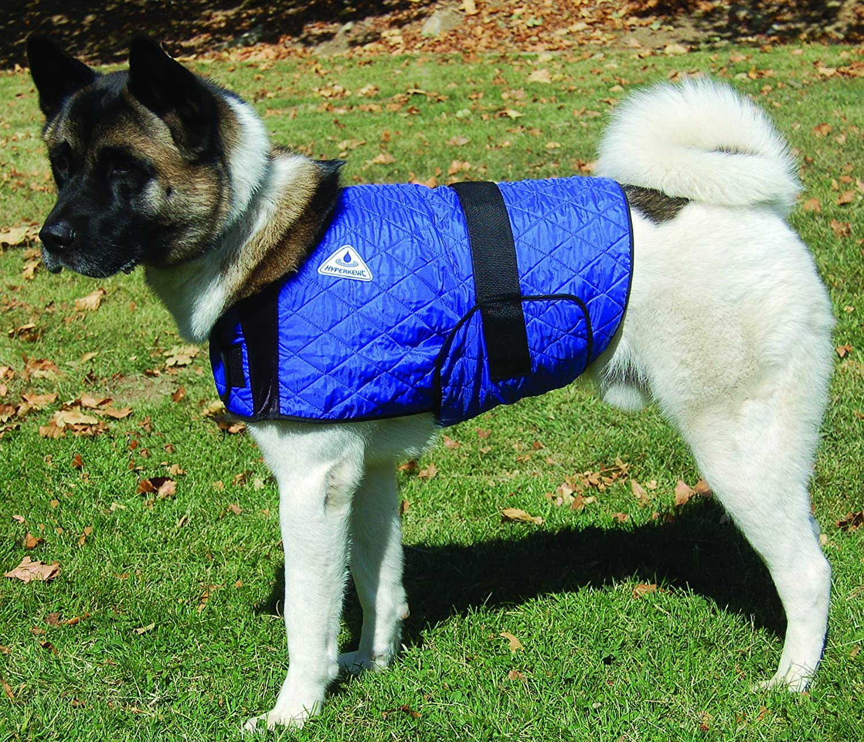 HyperKewl Cooling Dog Coat  SMbluee