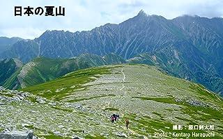 日本の夏山