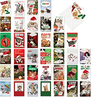 36 Pack of Christmas Kitties - Cute, Funny Xmas Greeting Cards - Boxed Set of Assorted Happy Holiday Cat Note Cards - Hilarious Kittens, Animal Stationery with 5x7 Envelopes AC6668XSG-B1x36