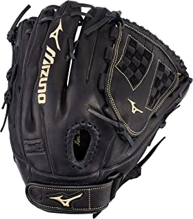 Best mizuno 12.5 fastpitch softball glove Reviews