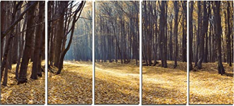 Design Art PT14011-60-28-5PE 5 Panels Path in The Fall Forest Panorama Large Canvas Art, 60 x 28""