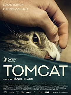 Best tomcat film 2016 Reviews