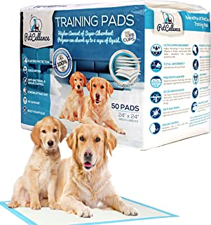 PetCellence Puppy Training Pads - Premium Ultra Absorbent Large Pee Pads for Dogs - Size 24