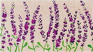 Theodore Magnus Natural Coir Doormat with Non-Slip Backing - 17 x 30 - Outdoor/Indoor - Light Natural - Wildflowers