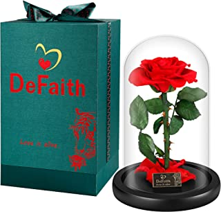 DEFAITH Real Rose 9'' Beauty and The Beast Enchanted Rose in Glass Gift for Her Valentines Day Anniversary Birthday Mother Day Christmas – Red, 9