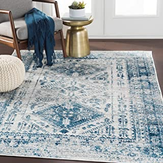 Evry Blue Light Gray Vintage Heriz Area Rug - 7'10