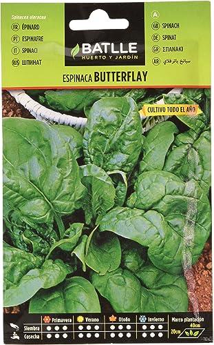 Semillas Hortícolas - Espinaca Butterflay - Batlle