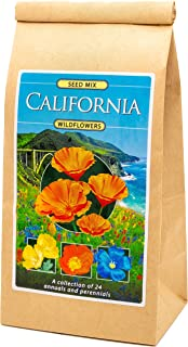 California Wildflower Seed Mix - A Beautiful Collection of Twelve annuals and perennials - Enjoy The Beauty of California ...
