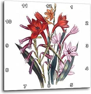 3dRose dpp_149634_1 Vintage Flowers Watsonia in Orange and Pink Wall Clock, 10 by 10-Inch