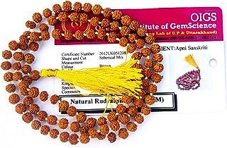 Apnisanskriti Lab Certified 5 Mukhi Rudraksha Mala for Men/Women Wearing (4mm, Rarest Zero Bead Size, Neck Length, 108+1)...