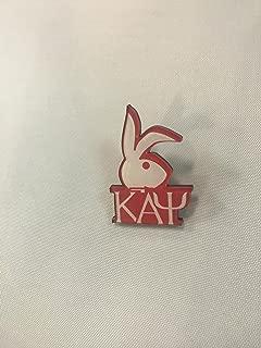 kappa alpha psi bunny