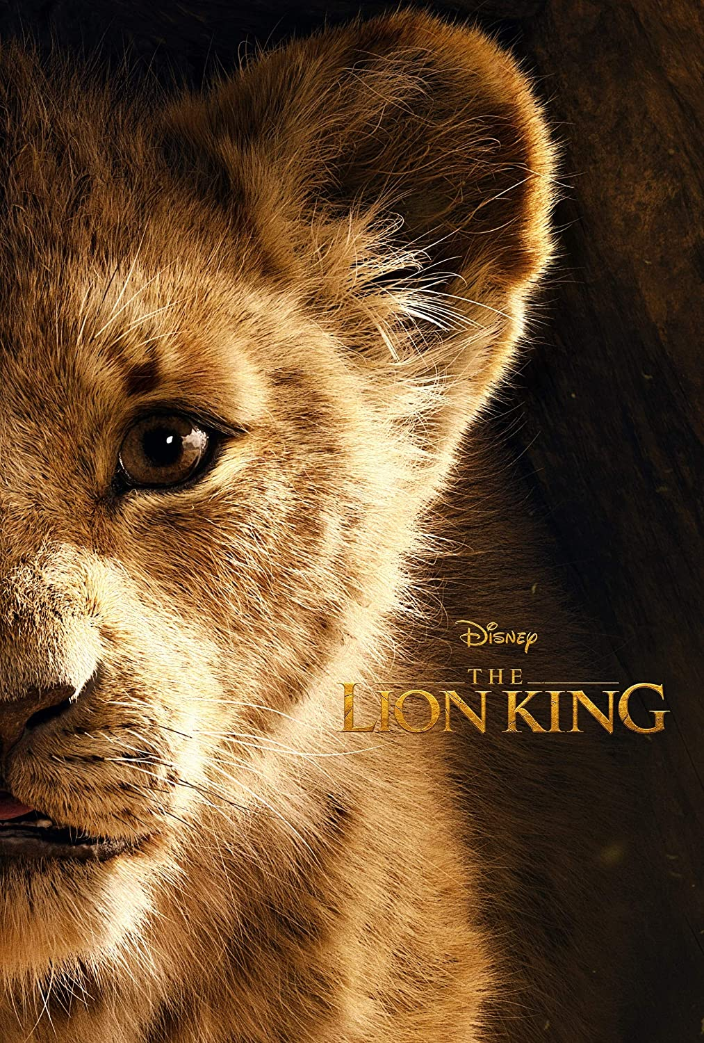 Black Creations Creations Creations The Lion King 2019 6