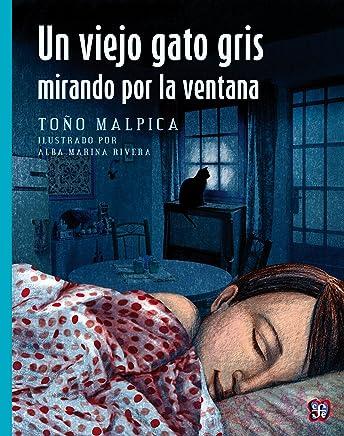Amazon.com: Un viejo gato gris mirando por la ventana (A La Orilla Del Viento) (Spanish Edition) eBook: Antonio Malpica, Alba Marina Rivera Rivera: Kindle ...