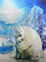 POLAR BEAR UNFRAMED Wall Art-Lenticular Technology Causes The Artwork To Flip-MULTIPLE PICTURES IN ONE-HOLOGRAM Type Images Change-MESMERIZING HOLOGRAPHIC Optical Illusions By THOSE FLIPPING PICTURES