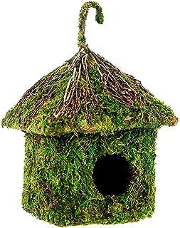 SuperMoss (56015) Shack Birdhouse, 6 by 8-Inch, Fresh Green