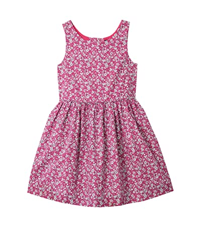 Polo Ralph Lauren Kids Floral Cotton Poplin Dress (Toddler) (Pink Multi) Girl