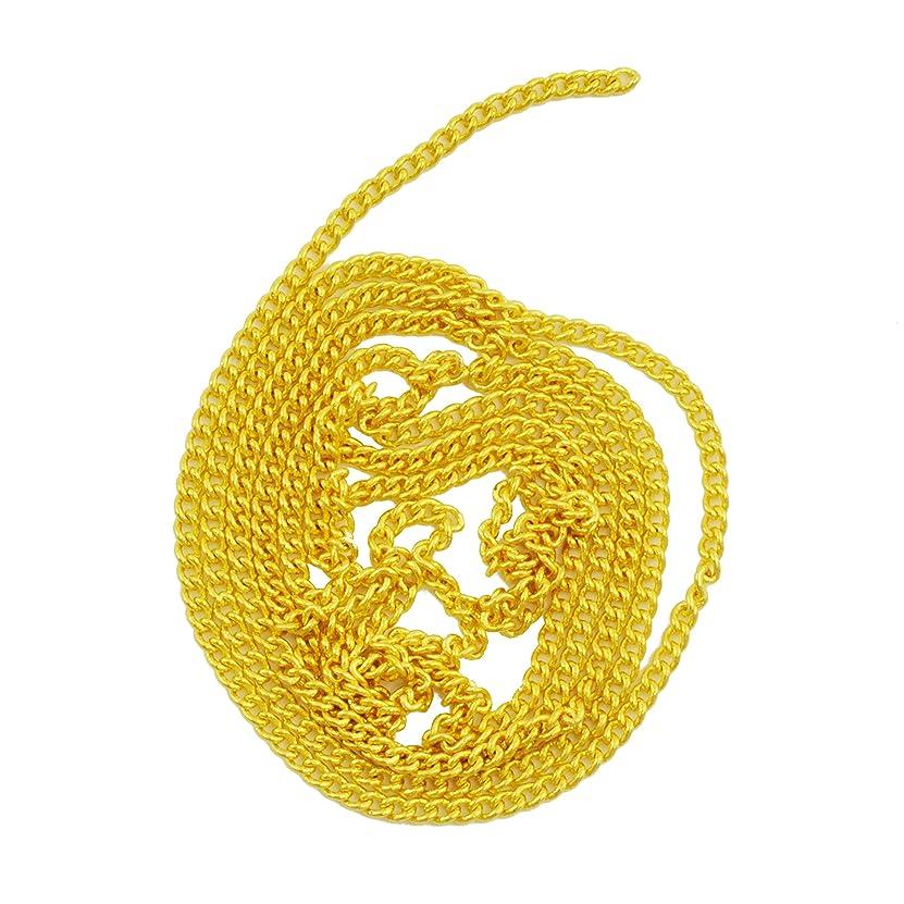 ストリップ硫黄ファームネイルパーツ ネイルチェーン 50cm ゴールド 金 デコパーツ