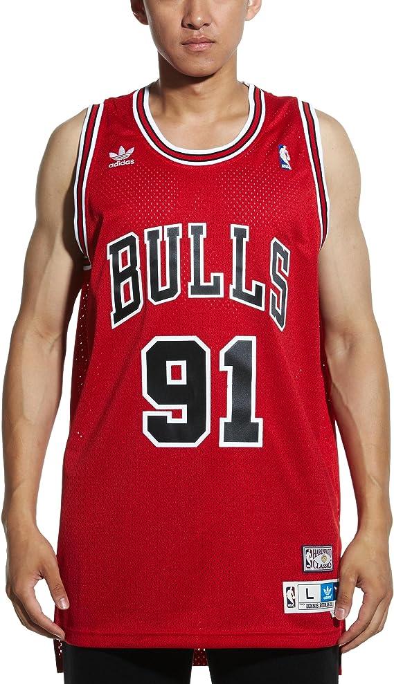 Amazon.com : NBA Chicago Bulls Dennis Rodman Swingman Jersey Red ...