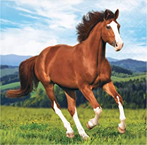 Wild Horse Beverage Napkins, 16 ct