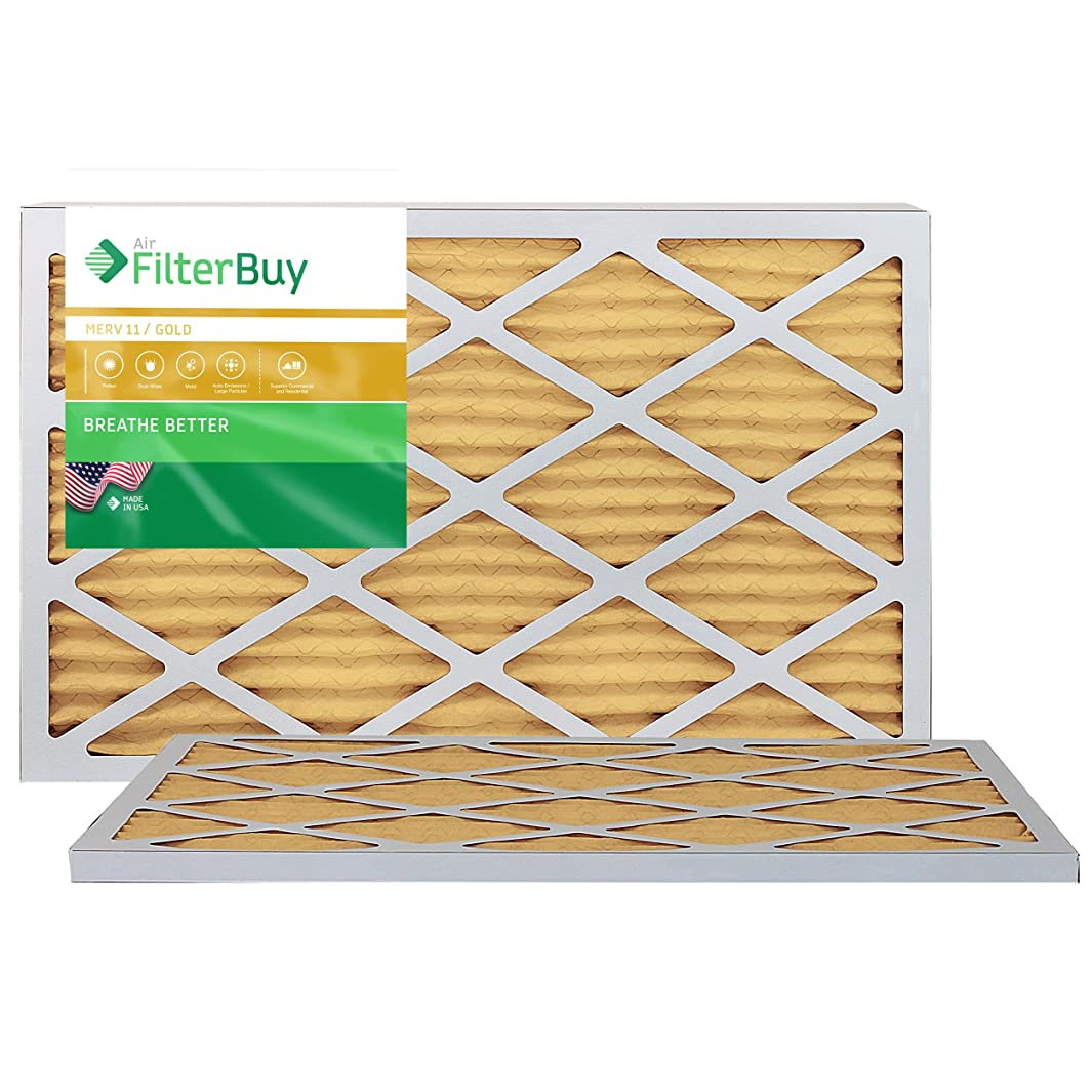 FilterBuy 14x24x1 MERV 11 Pleated AC Furnace Air Filter, (Pack of 2 Filters), 14x24x1 – Gold