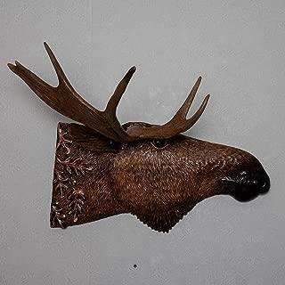Moose Taxidermy Antler Mount - Mounted Antler, Horn, Skull for Sale - Real, Decor - ST5101