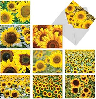 Beautiful Sunflower Blank Note Cards 10 Pack - 4 x 5.12 inch All Occasion 'sunny Side Up' Flower Greeting Cards - Boxed, Bulk Set of Assorted Writing Notecards - Floral Art w/Envelopes - M6042sl