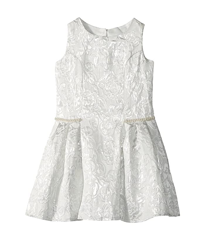 8c64e2eceb Us Angels Sleeveless Princess Bodice Dress w/ Drop Waist (Toddler ...