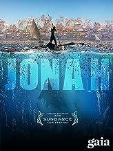 jonah and the big fish video