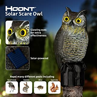 Hoont Realistic Owl Scarecrow with Flashing Eyes and Frightening Sound Solar Powered and Motion Activated, Frightens Birds and Pests Out of Your Property
